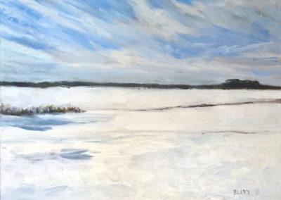 Snow - Rt 5