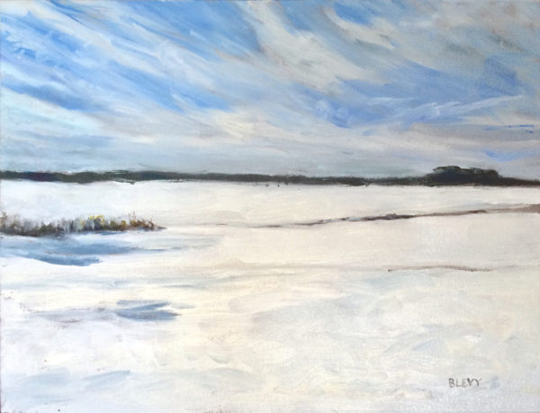 Bart Levy art snow painting