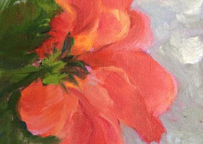 Vermilion Hibiscus