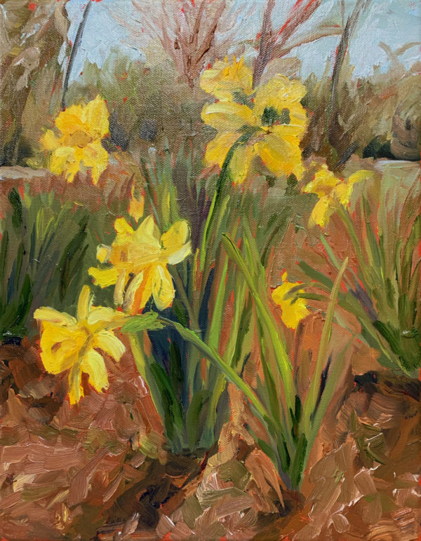 daffodils original oil painting by bart levy